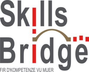 Digital Skills Bridge Digital Skills Bridge